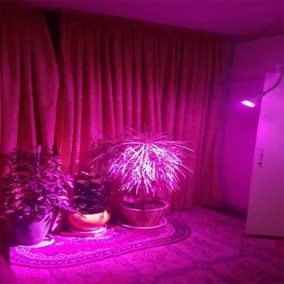 لامپ رشد گیاه 7 وات لنزی